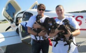 """Clear The Shelters Day: """"Bachelor"""" Prince Lorenzo Borghese Flies 330 Animals To Safety"""