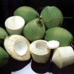 Coconut Water: Mama Nature's Gatorade