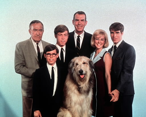 My Three Sons, My Three Sons is an American situation comedy. The series ran from 1960-1972 and was a huge hit