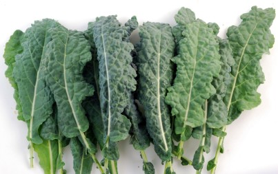 Why We Grow Kale in Our Basement