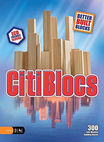 CitiBlocks 300 Piece Set