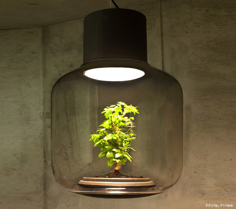 nui-studio-lamp-mygdal-if-its-hip-its-here-1