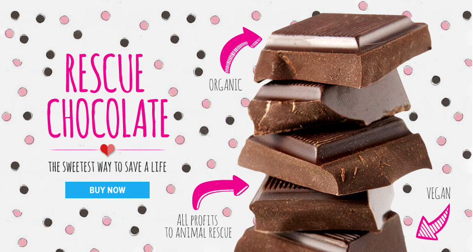 Incredible vegan chocolate that benefits dog rescue!