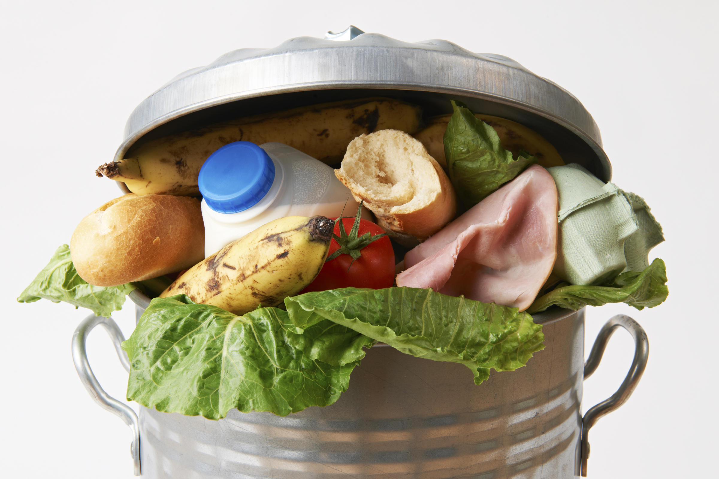 Finding Real-Life Solutions to Growing Food Waste Epidemic: Estimated 30-40% of Food Goes into the Garbage