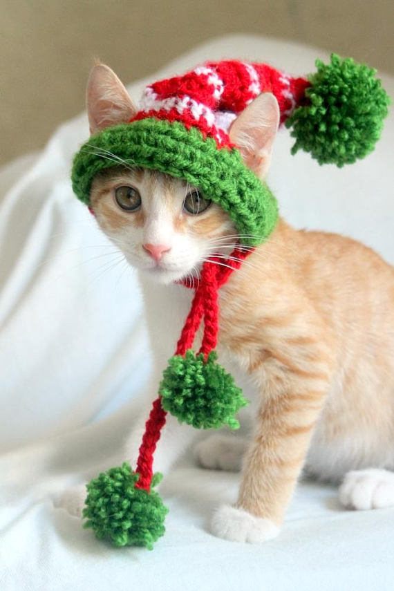Elf Cat Hat (In Vegan Yarns), $11 @etsy.com
