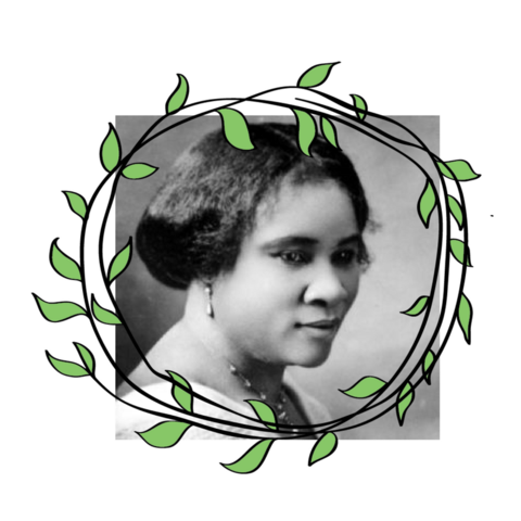 "Madam C.J. Walker (Sarah Breedlove) was born in 1867 in Louisiana. A former employee of Annie Turnbow Malone, Madam C.J. Walker invented her line of black hair care products in 1905, at a time when there weren't any options for black hair on the market. Her business was wildly successful and she became America's 1st self made female millionaire. She also popularized the press and curl style. ""I want the great masses of my people to take a greater pride in their personal appearance and to give their hair proper attention."" Source."