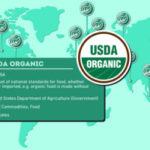 Eco-Labels Around the World [Interactive Infographic]