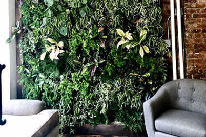 Green Home Upgrade: Living Wall Covers