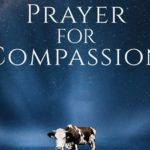 A Prayer for Compassion: A New Film Looks at Animals, Food, and Faith
