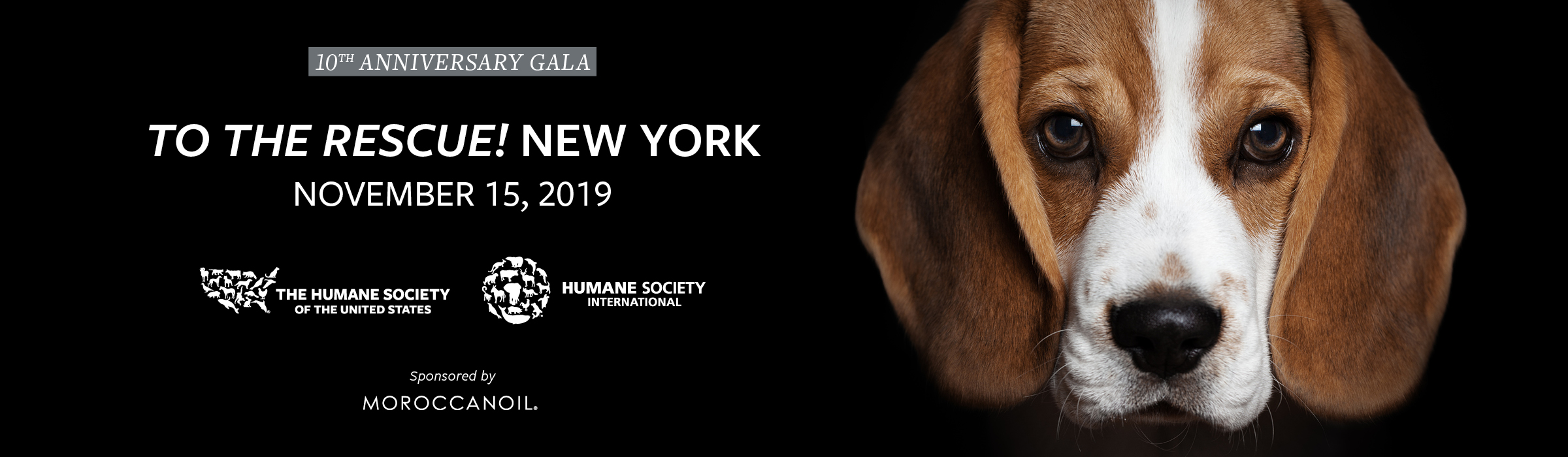"Jerry O'Connell and Rebecca Romijn to host the Humane Society of the United States ""To the Rescue!"" New York 10th Anniversary Gala"