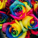 Rainbow Vibed Looks and Gifts For Spring